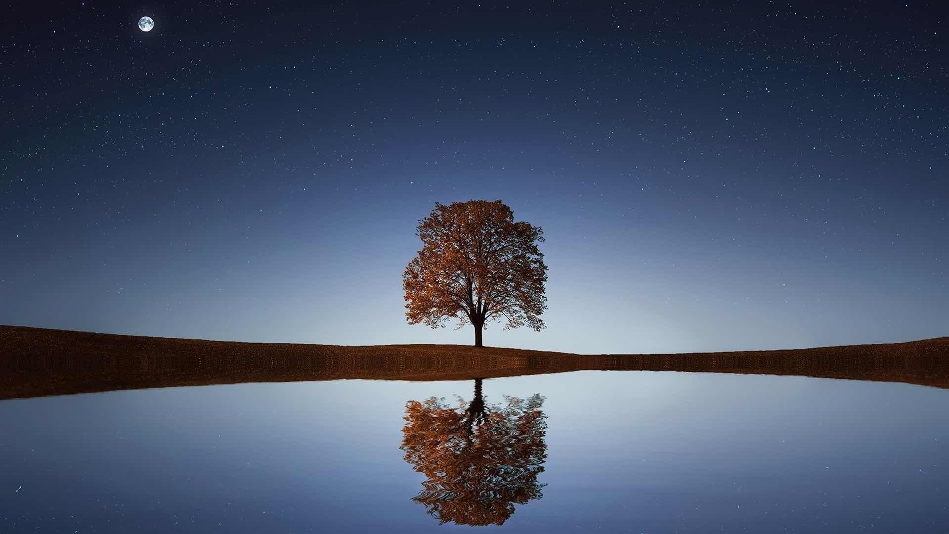 """Lo Eterno no puede ser creado porque """"Es"""" · Kryon por Mario Liani"""