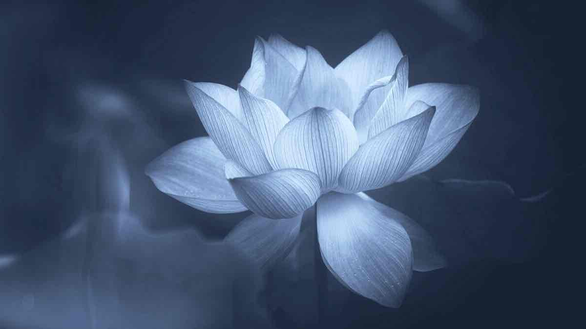 La conexion con el Espiritu